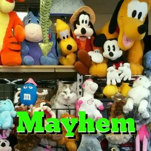 mayhem_and_friends